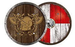 Viking shields