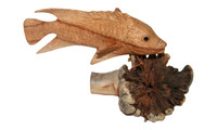 Fish on root