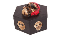 Hexagon-box skull carved 3D